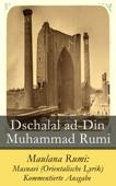 Maulana Rumi: Masnavi (Orientalische Lyrik)