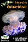 What Makes An Invertebrate An Invertebrate