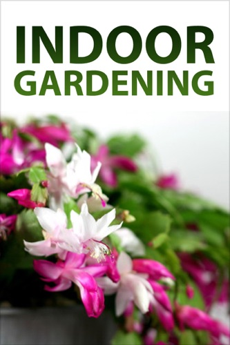 Authors & Editors of Instructables - Indoor Gardening