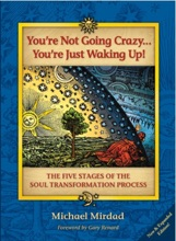 You're Not Going Crazy . . . You're Just Waking Up!