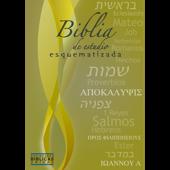 Biblia de estudio esquematizada Book Cover