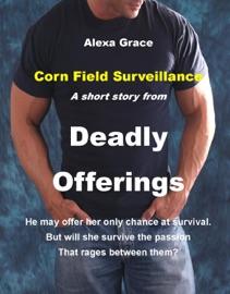 CORN FIELD SURVEILLANCE: A SHORT STORY