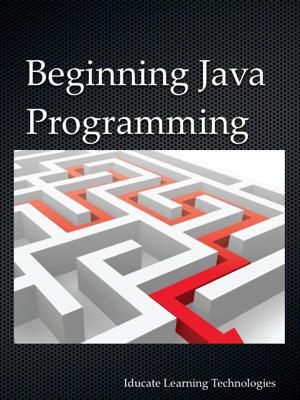 Beginning Java Programming - Jason Lim book