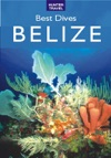 Best Dives Of Belize