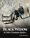 The Black Widow  Other Venomous Spiders