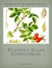 Luis GuLo - Manual de Plantas y Algas Comestibles LuisGuLo ilustraciГіn
