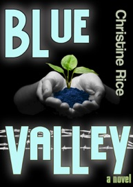 Blue Valley PDF Download
