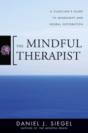The Mindful Therapist A Clinician S Guide To Mindsight And Neural Integration Norton Series On Interpersonal Neurobiology