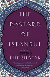 Download The Bastard of Istanbul