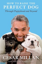 How to Raise the Perfect Dog PDF Download