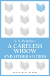 A Careless Widow And Other Stories
