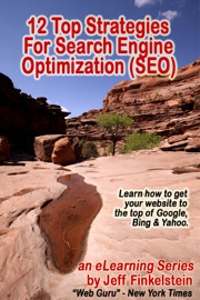 12 Strategies for Search Engine Optimization - Jeff Finkelstein Book