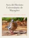 Aves Del Recinto Universitario De Mayaguez