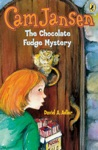 Cam Jansen The Chocolate Fudge Mystery 14