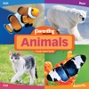 Animals From Parenting Magazine