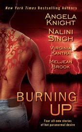 Burning Up PDF Download