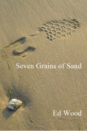 Seven Grains of Sand PDF Download