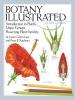 Botany Illustrated