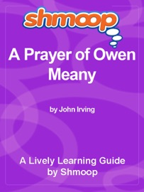 Shmoop Learning Guide A Prayer Of Owen Meany