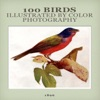 100 Birds Illustrated By Color Photography