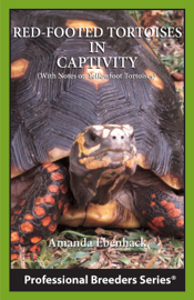 Red-footed Tortoises in Captivity