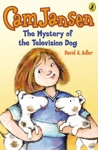 Cam Jansen The Mystery Of The Television Dog 4