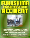 2011 Fukushima Daiichi TEPCO Nuclear Power Plant Accident