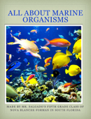 All About Marine Organisms