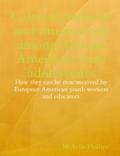 Cultural Patterns And Interactions Among African American Male Adolescents