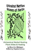 Stinging Nettles - Queen Of Herbs