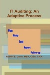 IT Auditing An Adaptive Process