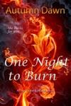 One Night To Burn
