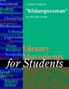 A Study Guide For Bildungsroman
