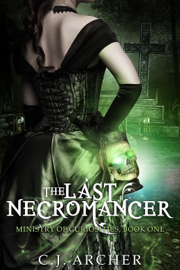 The Last Necromancer book