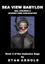 Sea View Babylon: Sex, Violence & Spanish Verb Conjugation