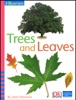 iOpener: Trees and Leaves