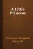 Frances Hodgson Burnett - A Little Princess artwork