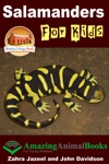 Salamanders For Kids