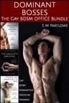 Dominant Bosses The Gay BDSM Office Bundle Gay BDSM Domination Discipline Spanking