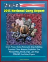 2013 National Gang Report Street Prison Outlaw Motorcycle Drug Trafficking Organized Crime Weapons Explosives Eme Mexican Mafia Bloods Crips Latin Kings OMG BCF Los Zetas Pagans
