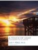 Luis Perez - A Touch of Light  artwork