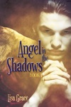 Angel In The Shadows Book 1 By Lisa Grace Angel Series