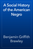 Benjamin Griffith Brawley - A Social History of the American Negro artwork