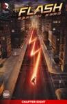The Flash Season Zero 2014- 8