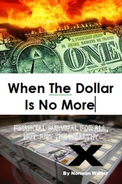 Download and Read Online When The Dollar Is No More: Financial Survival For All, Not Just The Wealthy