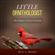 Little Ornithologist