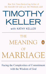 The Meaning of Marriage ebook