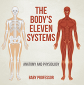 The Body's Eleven Systems  Anatomy and Physiology