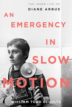 An Emergency in Slow Motion image