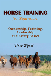 Horse Training for Beginners